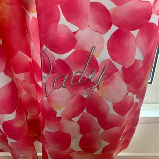 レディー(Rady)のrady 花びらカーテン レア 2枚(カーテン)