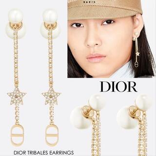 ディオール(Dior)のDIOR TRIBALES EARRINGS(その他)