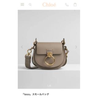 Chloe - クロエtessショルダーバック