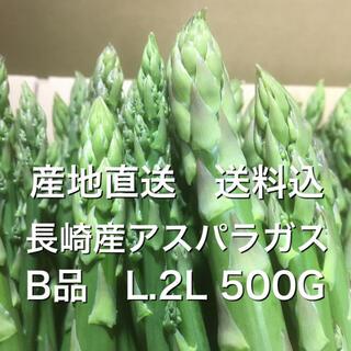 産地直送 長崎産アスパラガス B品L.2L 500g