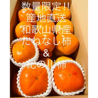 【限定数】【産地直送】和歌山県産たねなし柿と紀の川柿食べ比べセット