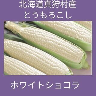 北海道真狩村産とうもろこし、品種はホワイトショコラ(野菜)