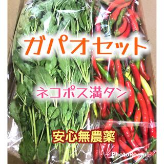 野菜詰め合わせ【ガパオ、プリッキーヌ4種】☆無農薬☆新鮮☆ ผัก