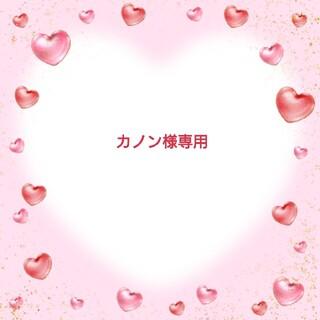 756 不織布マスクカバー ホワイト薔薇刺繍