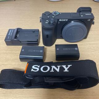 SONY - 美品 SONY  α6600 ILCE-6600 バッテリー2個