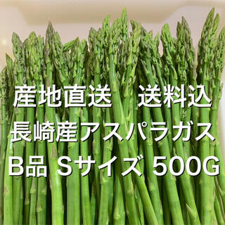 産地直送 長崎産アスパラガス B品Sサイズ500G