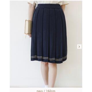 フィント(F i.n.t)のライン使いニットプリーツスカート(ひざ丈スカート)