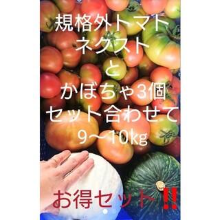 割れのひどい わけありトマト【品種】ネクストとかぼちゃ3個まで合わせて9~10㎏(野菜)