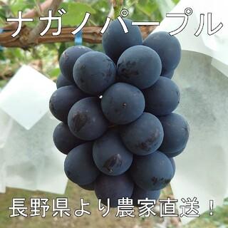 農家直送 ナガノパープル 4パックセット (350g×4個) 長野県産 □(フルーツ)