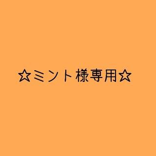 ニンテンドウ(任天堂)の☆ミント様専用ページ2☆(キーホルダー/ストラップ)