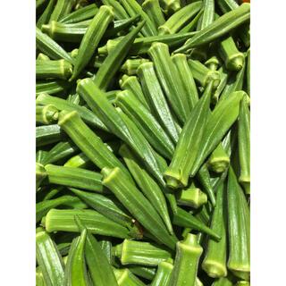 オクラ100本(野菜)