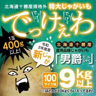 新じゃが9kg以上【北海道十勝産男爵】規格外超特大サイズ【意外とレア】土付き(野菜)