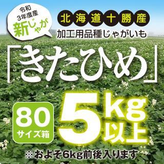 新じゃが5kg以上【北海道十勝産きたひめ】規格内M〜Lサイズ【ポテチの芋】土付き(野菜)