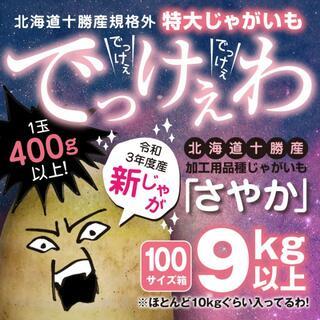 新じゃが9kg以上【北海道十勝産さやか】規格外超特大サイズ【結構レア】土付き(野菜)