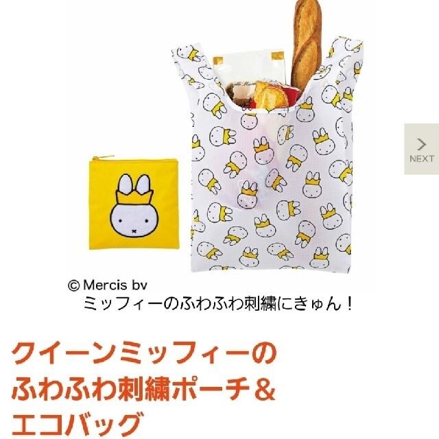 宝島社(タカラジマシャ)のオトナミューズ  付録 10月号 レディースのバッグ(エコバッグ)の商品写真