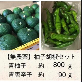 【コンパクト】柚子胡椒セット(野菜)