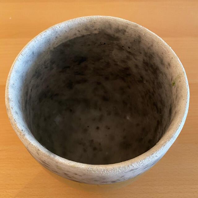 ACTUS(アクタス)のドマーニ鉢 DOMANI ミンスク16 インテリア/住まい/日用品のインテリア小物(花瓶)の商品写真