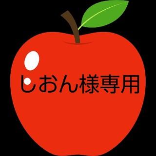 しおん様専用小さい紅玉りんご家庭用16個(フルーツ)