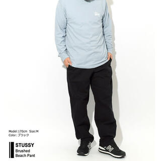 STUSSY - STUSSY Brushed Beach 116423 USAモデル 正規品