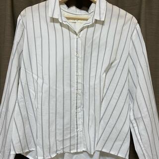 セポ(CEPO)のストライプシャツ(シャツ/ブラウス(半袖/袖なし))