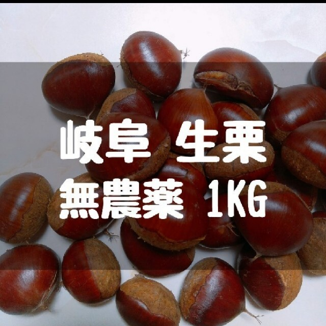 無農薬 生栗 1kg 食品/飲料/酒の食品(野菜)の商品写真