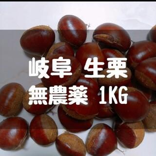 無農薬 生栗 1kg