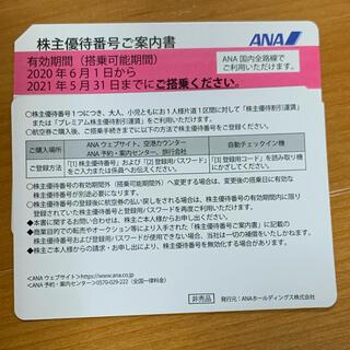 エーエヌエー(ゼンニッポンクウユ)(ANA(全日本空輸))のNR01さん専用 ANA株主優待券 ⭐︎ 2枚(航空券)