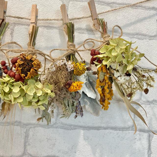 ドライフラワー スワッグ ガーランド❁429秋色 ミモザ スモークツリー 花束 ハンドメイドのフラワー/ガーデン(ドライフラワー)の商品写真