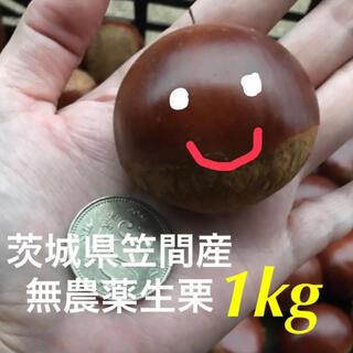 茨城県笠間産無農薬生栗1kg(フルーツ)