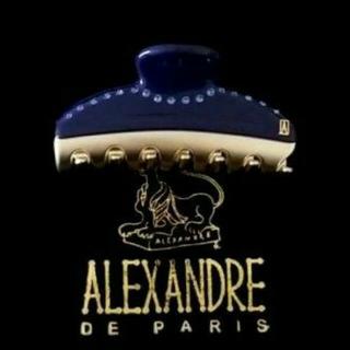 アレクサンドルドゥパリ(Alexandre de Paris)の新品☆アレクサンドル ドゥ パリ PINCES VENDOME(バレッタ/ヘアクリップ)