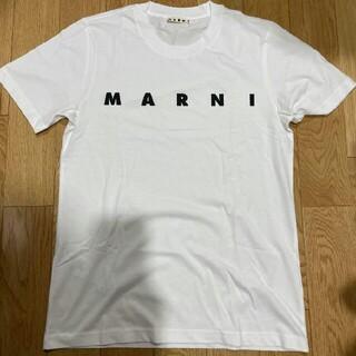 Marni - MARNI マルニ Tシャツ カットソー