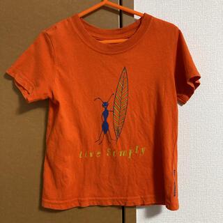 パタゴニア(patagonia)のpatagonia キッズTシャツ 2T 90cm目安(ジャケット/上着)