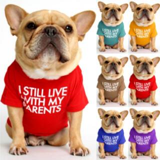 完売・ラスト1点【新品】Lサイズ レッド ブルー スカイブルー Tシャツ 中型犬