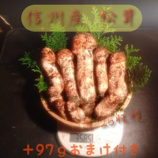 信州産 松茸 9/26収穫 つぼみ 350g(9本)
