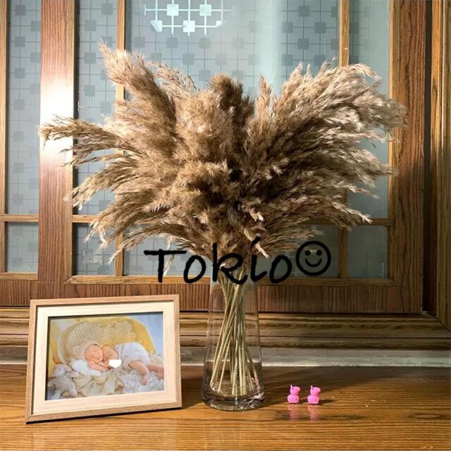 ふわふわ パンパスグラス ナチュラルブラウン 3本 ハンドメイドのフラワー/ガーデン(ドライフラワー)の商品写真