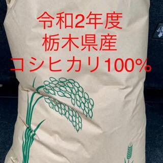 栃木 コシヒカリ100%  令和2年度 玄米 10キロ(米/穀物)