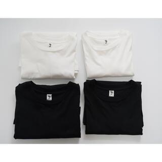 COMOLI - l'echoppe Tシャツ セット販売