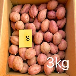 【絶品】種子島産  安納芋S 3kg