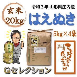 令和3年 山形県庄内産 はえぬき 玄米20kg Gセレクション(米/穀物)