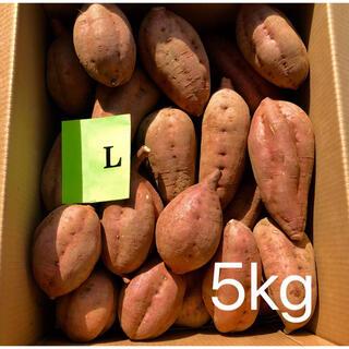 【絶品】種子島産  安納芋L 5kg