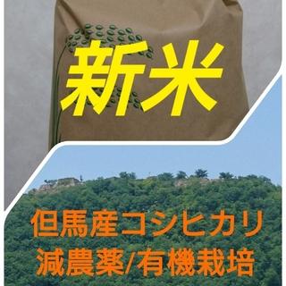 但馬産コシヒカリ新米5キロ(米/穀物)