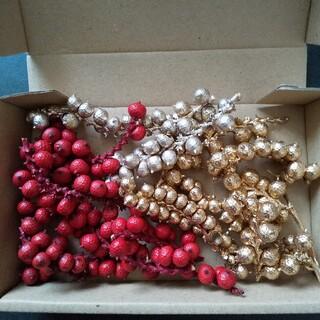 カネラ 3色 クリスマス花材 ドライフラワー ハーバリウム花材