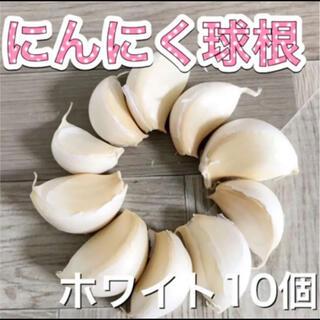 ニンニク球根10個 ホワイト系(プランター)