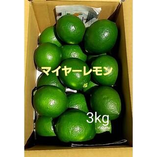 【送料無料】マイヤーレモン☆国産レモン グリーンレモン / 箱込み 3キロ(フルーツ)