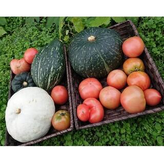 北海道産かぼちゃ4種類6㎏食べ比べセットとわけありトマト2㎏セット(野菜)