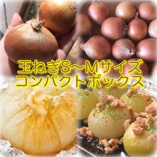玉ねぎ 小さめサイズ コンパクトボックス(野菜)