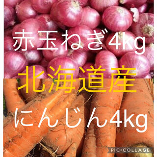 北海道産にんじん4kg赤玉ねぎ4kg(野菜)