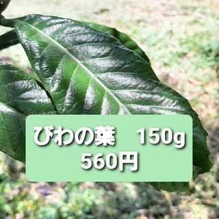 ビワの葉 フレッシュ 150g(野菜)
