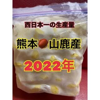 熊本 山鹿 和栗 むき栗(野菜)