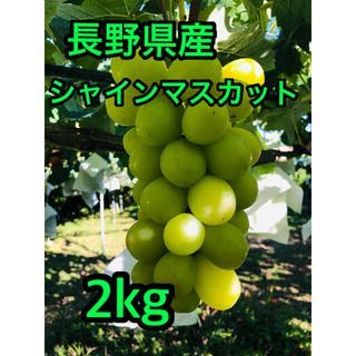 長野県産シャインマスカット 房 2kg